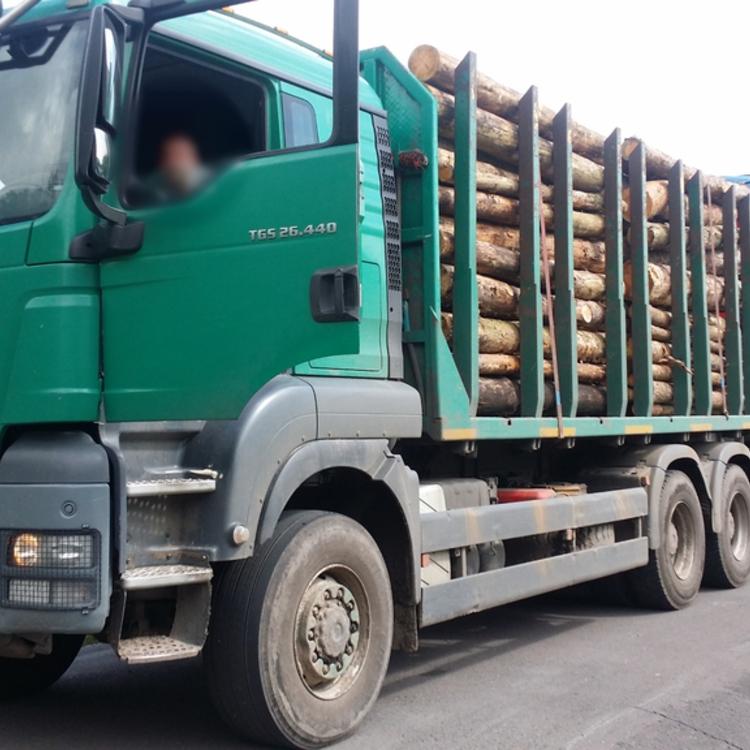 Galeria za duzo drewna