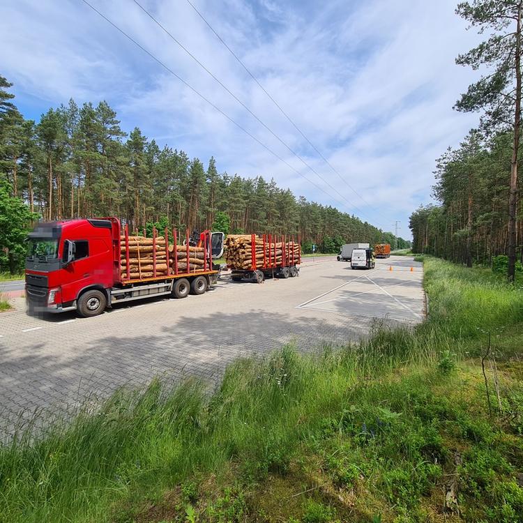 Galeria Kolejny przeładowany pojazd przewożący drewno.
