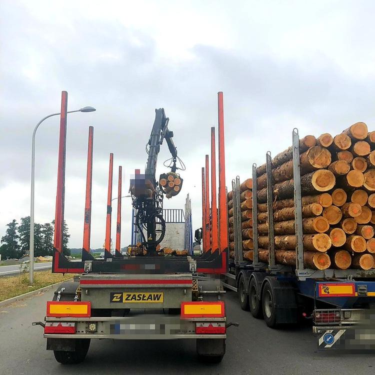 Galeria Za ciężki transport drewna